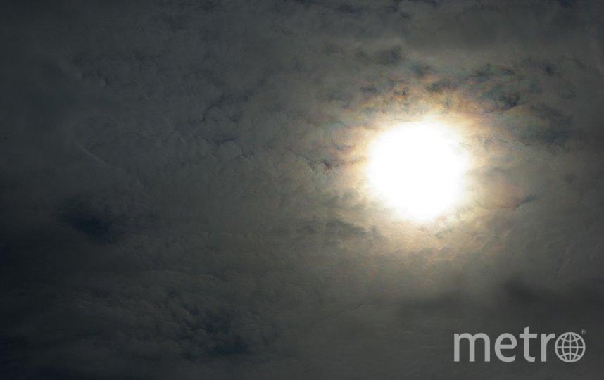 По мнению исследователей, вымирание могла вызвать пыль, образовавшаяся из-за столкновения астероидов. Фото pixabay.com