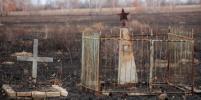 Кладбище ветеранов Великой Отечественной выгорело под Новосибирском