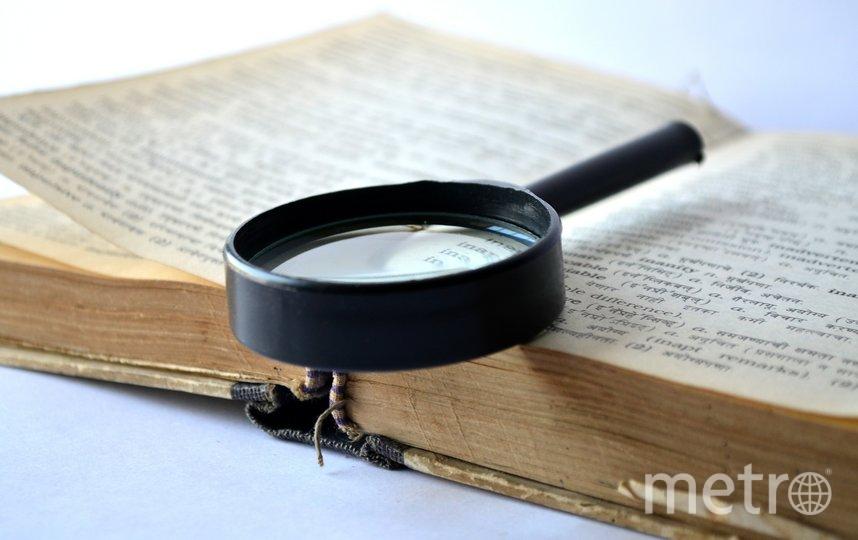 Британский словарь Collins назвал слово 2019 года. Фото pixabay.com