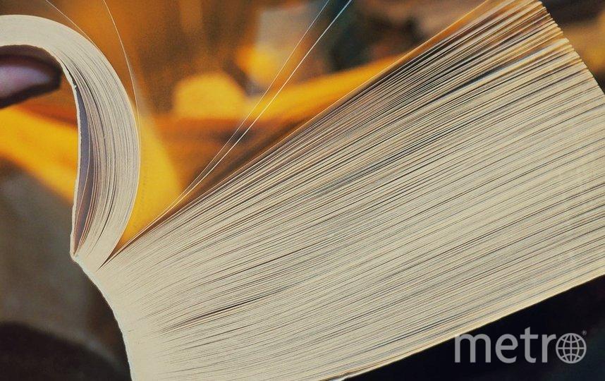 """Российская энциклопедия будет отличаться от """"Википедии"""". Фото https://pixabay.com, """"Metro"""""""