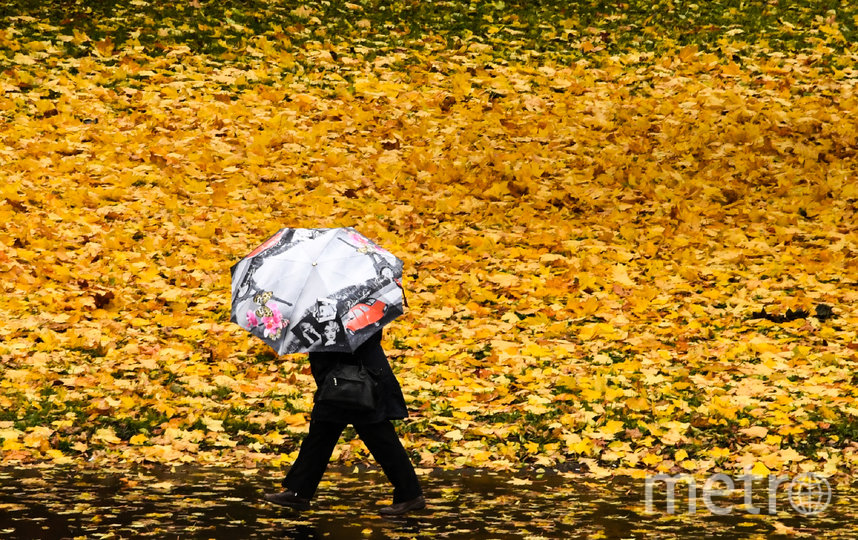 Осень пока проходит комфортно для москвичей. Фото AFP