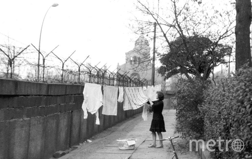 Немка вешает бельё сушиться на верёвку, протянутую между Берлинской стеной и деревом. 13 ноября 1963 года. Фото Getty