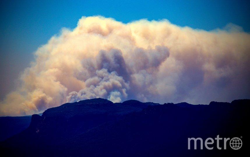 В Австралии стремительно распространяется огонь. Фото AFP