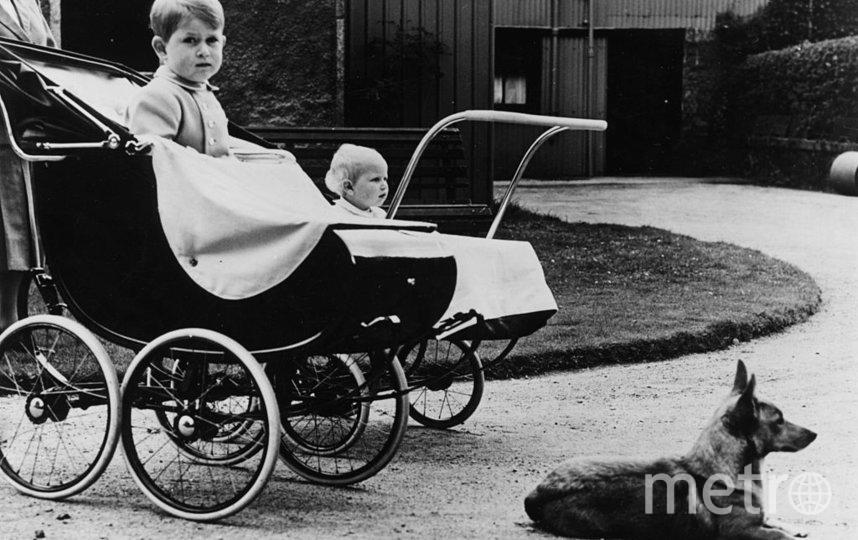 Принц Чарльз и принцесса Анна, август 1951 года. Фото Getty