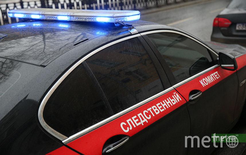 Тело женщины с множеством ножевых ранений нашли в московском парке. Фото Василий Кузьмичёнок