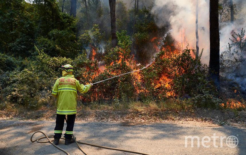 Пожары бушуют на юго-востоке Австралии. Фото Getty