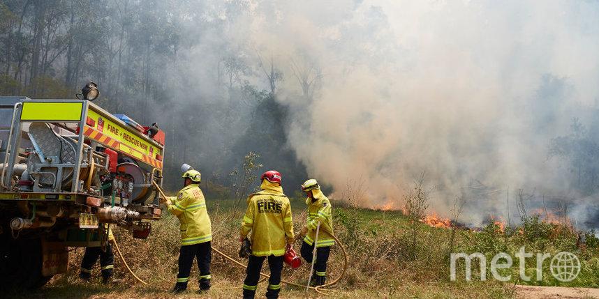 Горят дома, гибнут люди и коалы, дым уже в Сиднее: страшные пожары бушуют в Австралии