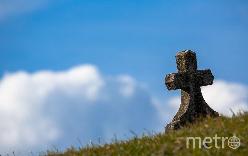 В американском городе Тампа, штат Флорида, во дворе школы обнаружили 145 могил. Фото pixabay.com