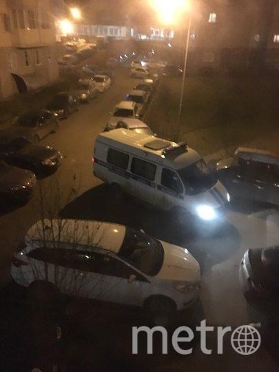 """Полицейские приехали оперативно. Фото https://vk.com/wall-33486_473443, """"Metro"""""""
