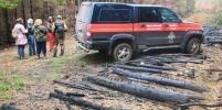 В России для поиска и спасения пропавших людей разрабатывают подкожные чипы