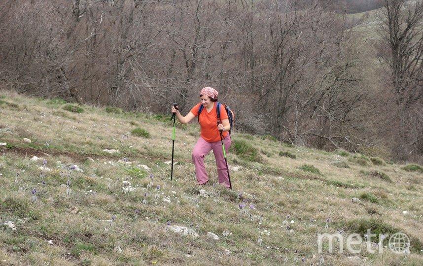"Подъем на Кара-Даг, пеший поход по Крыму. Я бабушка с 10-летним стажем, сейчас мне 61 год. Фото Слободова Анна, ""Metro"""