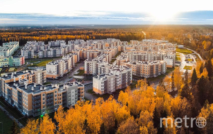 """Многие современные ЖК могут похвастаться природным окружением. Фото ГК «КВС», """"Metro"""""""
