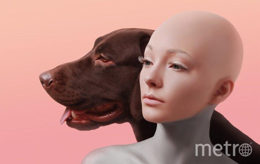 """Меня зовут Екатерина это мой пес Ричард. Я модель и беру его с собой на съёмки. Его конечно пугает вспышка, но на фотках он получается лучше меня. Самый добрый пёс на свете. Фото """"Metro"""""""