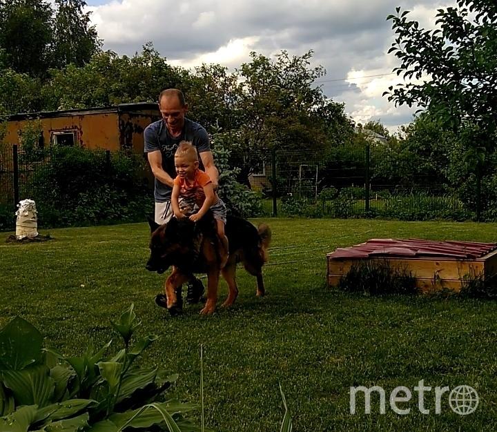 """Джека подобрали в 2015 году с перебитой передней лапой и ранением в бок. Выходили, и теперь он номер """"один"""" в поселке, где живут его хозяева. Очень любит своего маленького хозяина, игры и выезды на квадроциклах. Фото Сергей, """"Metro"""""""