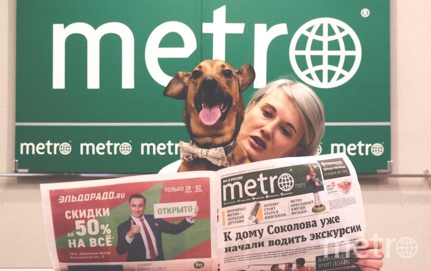 "Доби - редактор выпуска Metro-Петербург о животных. Фото Алена Бобрович, ""Metro"""