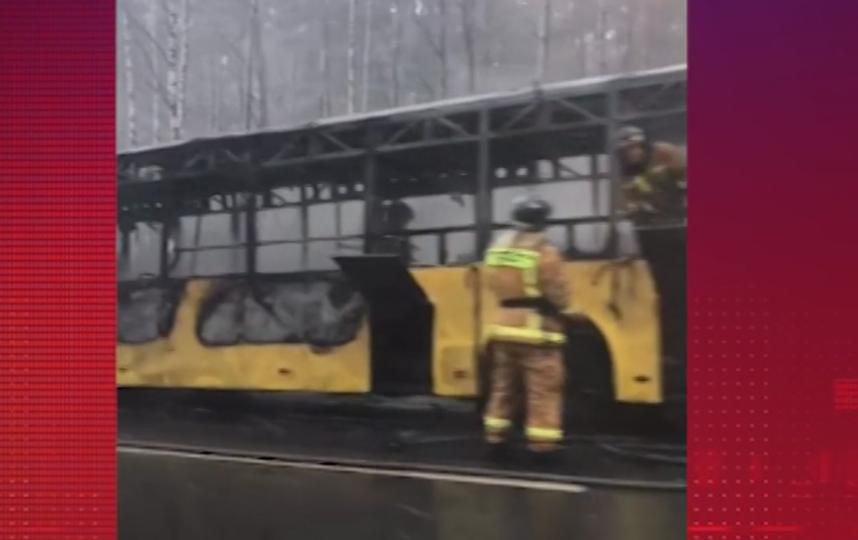 50 человек спаслись из полыхающего автобуса в Петербурге. Фото скриншот видео www.5-tv.ru/