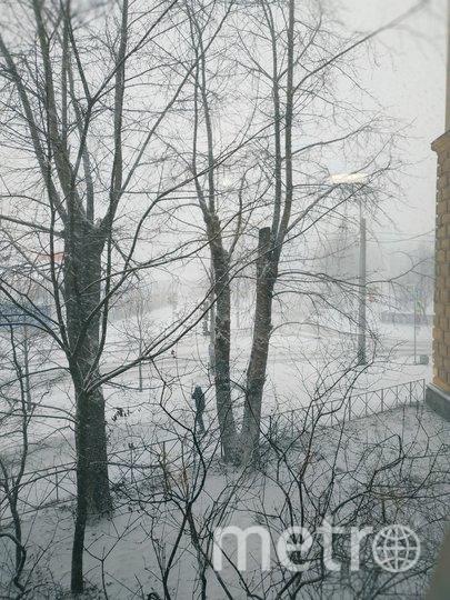 """Зима в Петербург пришла по расписанию. Фото Наталья Сидоровская, """"Metro"""""""