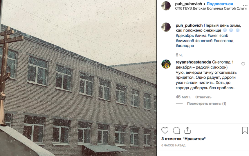 Зима в Петербург пришла по расписанию. Фото скриншот www.instagram.com/puh_puhovich/
