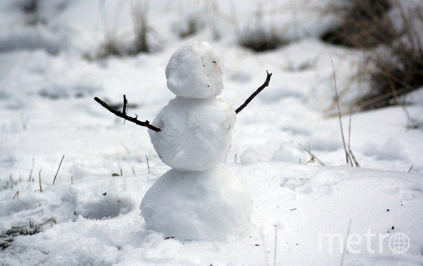 Поиграть в снежки и слепить снеговика. Фото pixabay.com