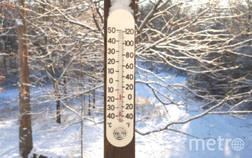 "Петербург засыпало снегом. Фото ""Metro"""