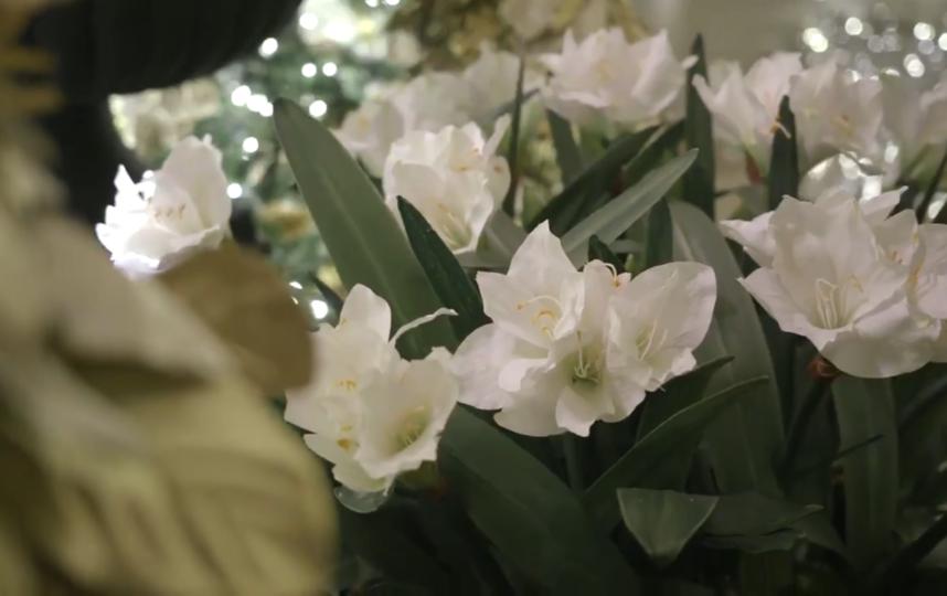 """Убранство Белого дома к Рождеству-2020. Фото https://twitter.com/FLOTUS/status/1201351943790174208, """"Metro"""""""