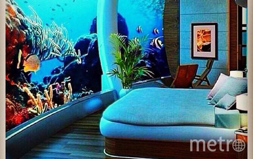 The Poseidon Underwater Resort. Фото скриншот @shaylavee1