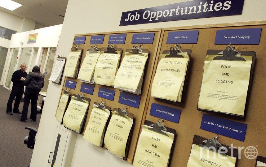 Жительница Австралии исказила информацию в своём резюме, чтобы получить высокооплачиваемую работу в региональном правительстве. Фото Getty