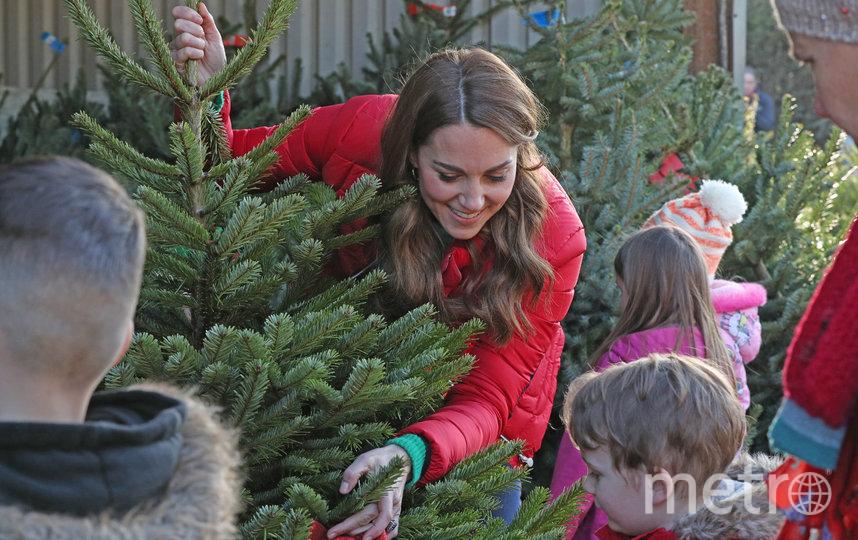 Кейт Миддлтон посетила ярмарку рождественских елок. Фото Getty