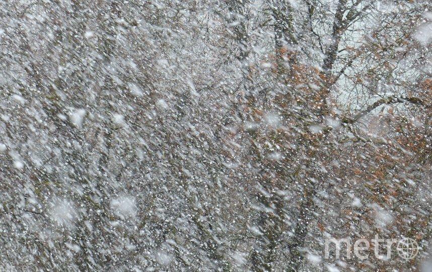 """Три самолета не смогли сесть в Пулково из-за ночного снегопада. Фото Pixabay , """"Metro"""""""