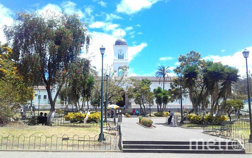Ожидание. Фото ToLlife Jhon | Ecuador