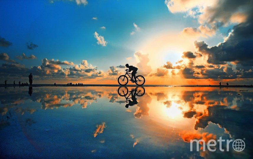 Утренний свет. Фото Sourav Das | international