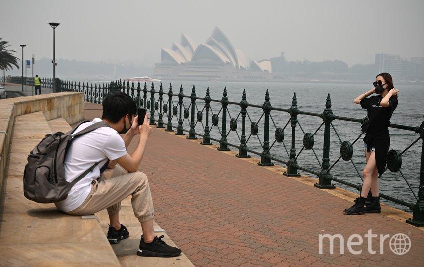 Австралийский Сидней накрыло густым смогом от лесных пожаров на востоке страны. Фото AFP