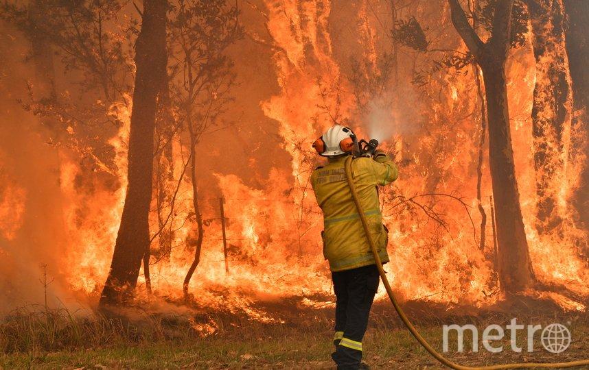 В результате разбушивавшихся лесных пожаров погибло шесть человек, более 700 домов было разрушено. Фото AFP