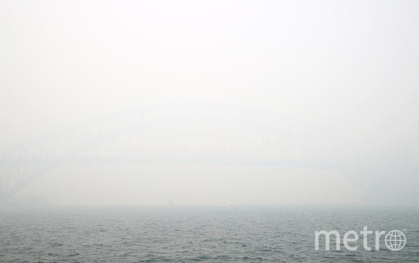 Австралийский Сидней накрыло густым смогом от лесных пожаров на востоке страны. Фото Getty