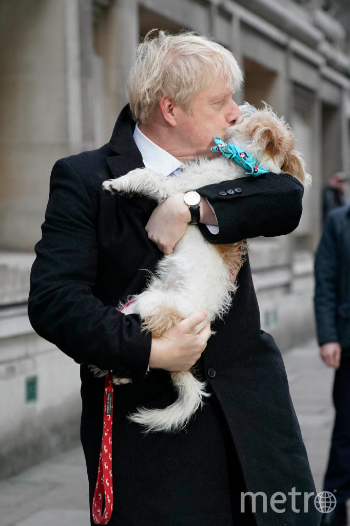 Борис Джонсон и его собака Дилан. Фото Getty