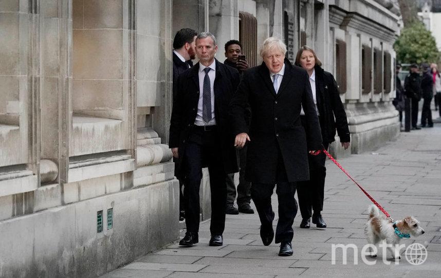 Борис Джонсон пришел на выборы с собакой. Она явно принесла ему удачу. Фото Getty