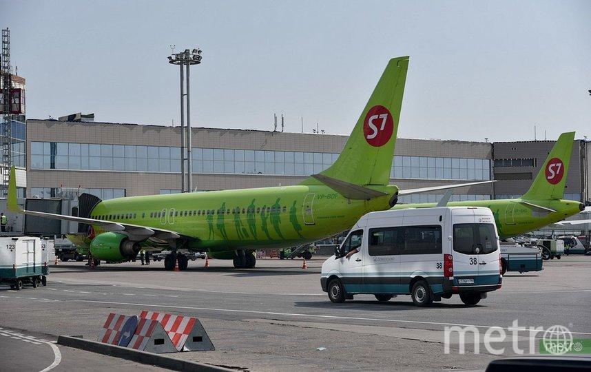 В Домодедово пассажир рейса Москва-Краснодар угрожал взорвать гранату в самолёте. Фото Василий Кузьмичёнок