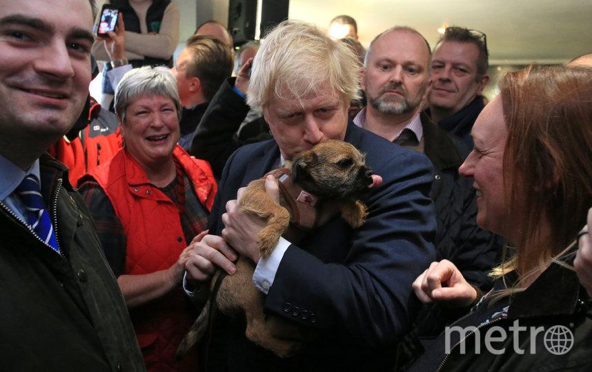 Джонсон пришёл на участок с собакой – и избиратели сделали из этого флешмоб #DogsAtPollingStations. Фото Getty