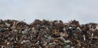 Названы регионы для вывоза мусора из Москвы