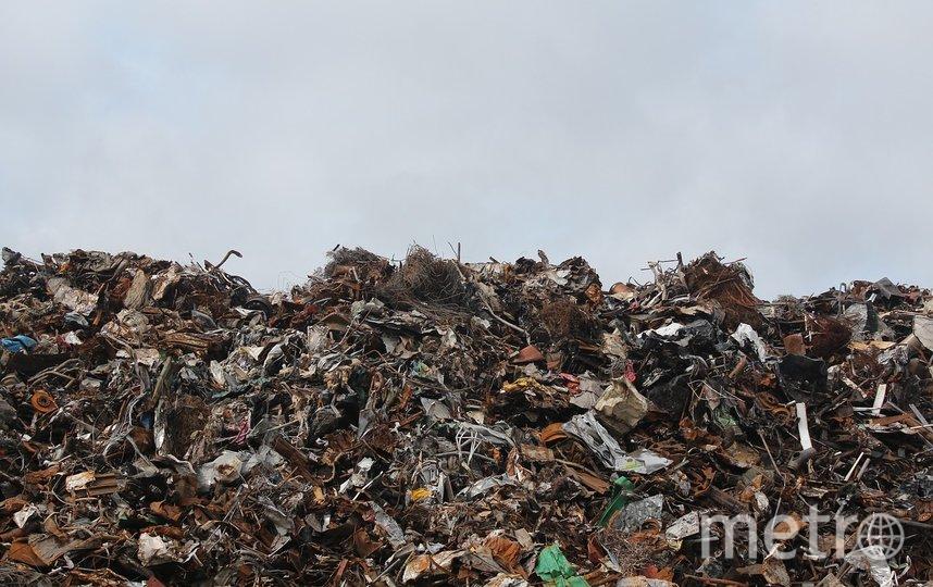 Названы регионы для вывоза московского мусора. Фото pixabay.com