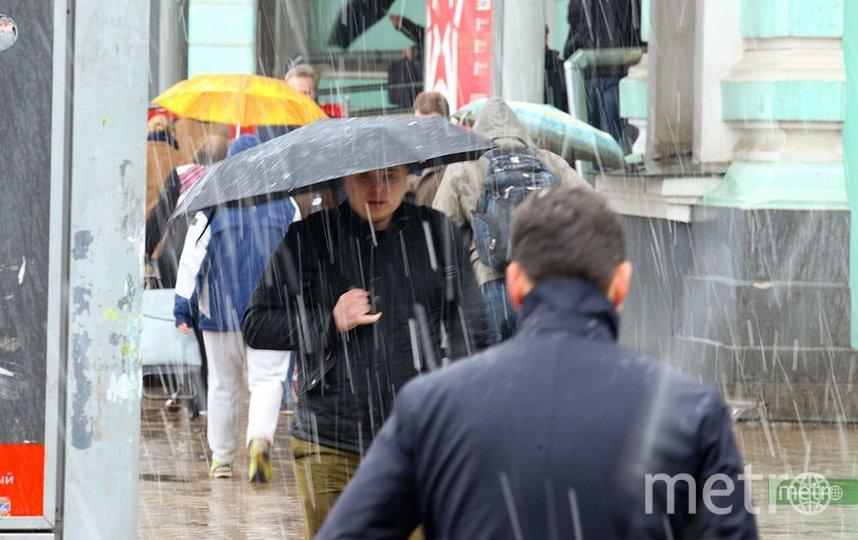 Температура воздуха до +6 градусов и дожди ожидаются в Москве. Фото Василий Кузьмичёнок