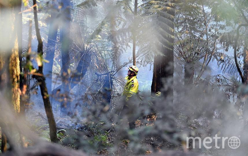В Австралии побит температурный рекорд. Фото AFP