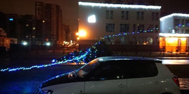 Упавшая елка в Петербурге.