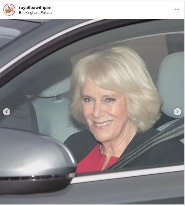 Камилла, супруга принца Чарльза. Фото https://twitter.com/KensingtonRoyal