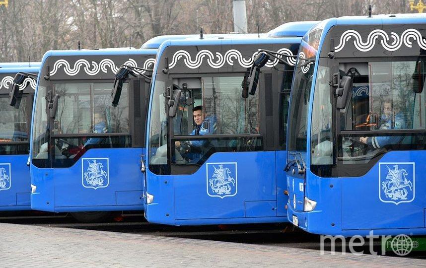 В Москве у автобусов № 784 изменится маршрут: свяжут МЦД и три линии метро. Фото Василий Кузьмичёнок