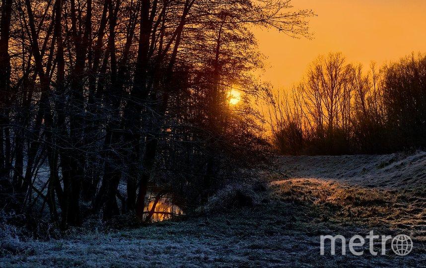 Зимнее солнцестояние 2019: ритуалы и приметы. Фото pixabay.com