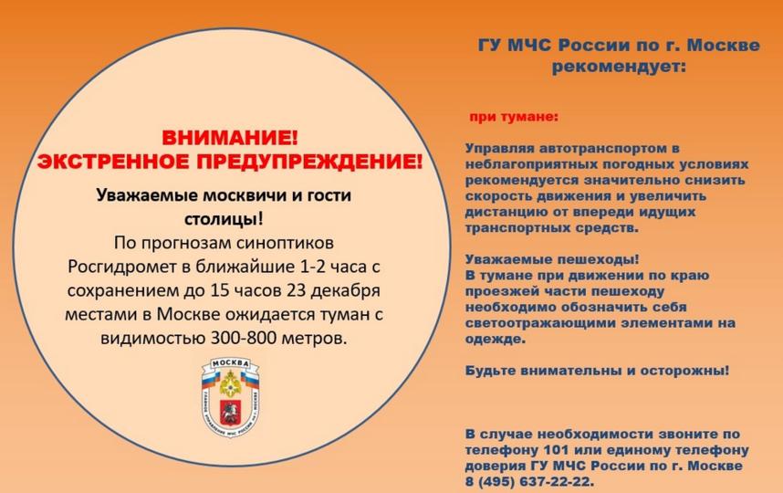 МЧС предупредило москвичей о тумане. Фото https://moscow.mchs.ru