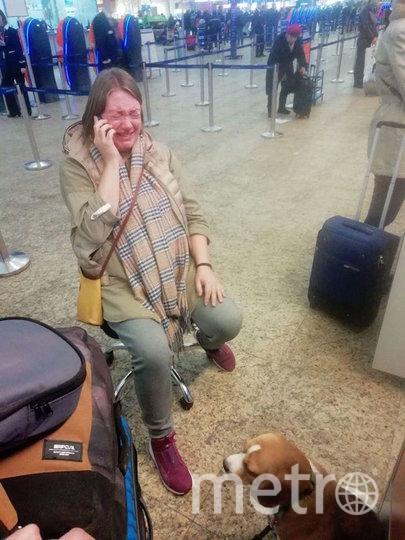 До Нью-Йорка собаки летели в намордниках в ногах у хозяев. Фото скриншот | facebook.com/TLV.Sergey