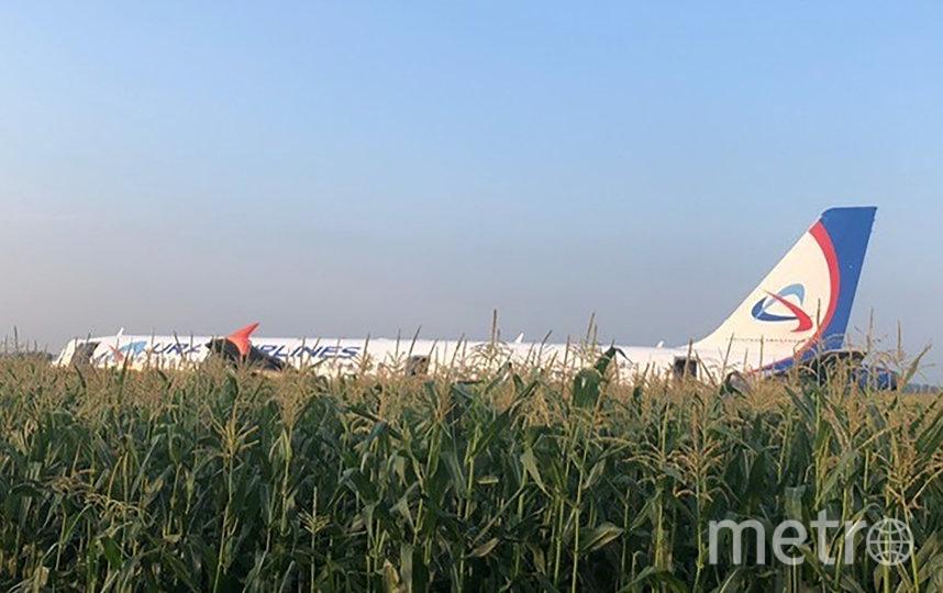 15 августа стало вторым днём рождения для 226 пассажиров и семи членов экипажа Airbus A321. Фото AFP