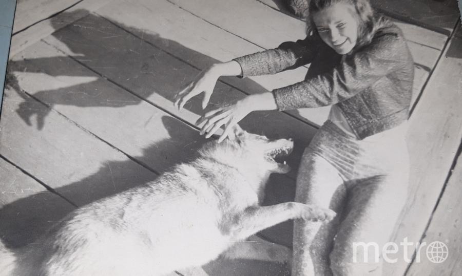 """Этой фотографии 45 лет.Нас от завода посылали в Тихвинскую область для оказания помощи колхозу в уборке урожая.Девушку на фото завут Наташа и ей уже за 60 лет, а собаке уже вовсе нет, но это был наш общий любимец Шарик. Фото Исаева елена Валентиновна, """"Metro"""""""